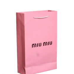 Fashionable Paper Bag for Shopping